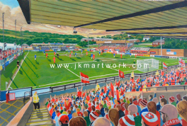 mccain stadium  on matchday print